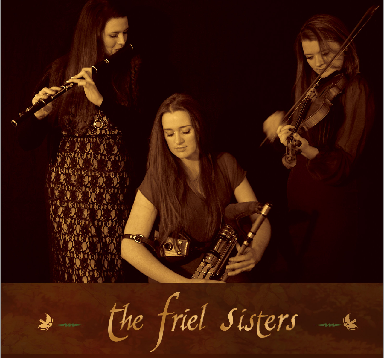Friel Music - Traditional Irish music & song group from